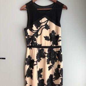 Anthropologie black and tan sheath dress